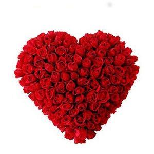 Romantic Heart carnation