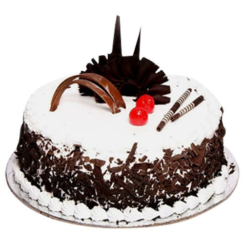 Chocolate black forest cakes