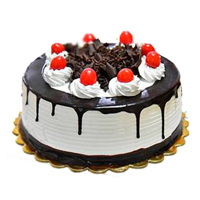 Chocolate yummy cake