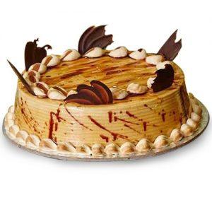 Creamy Coffee Chocolate Cake